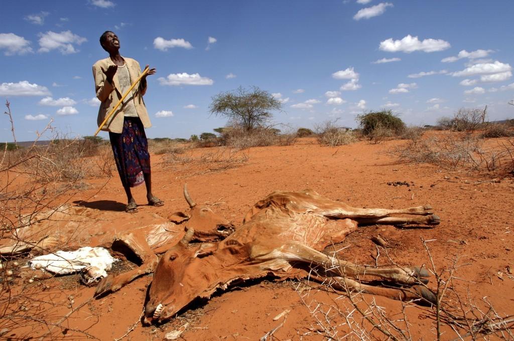 Conférence internationale des sociétés civiles sur les accords climat Revivez les échanges de cette journée en image et en tweets
