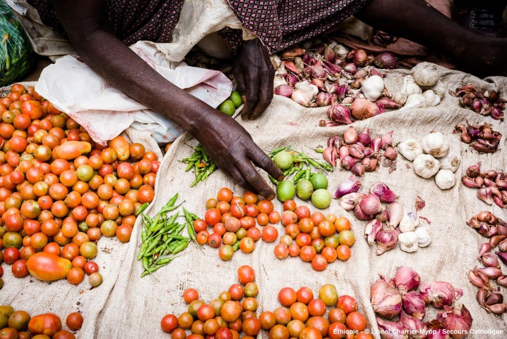 Reportage en Ethiopie sur la sécurité alimentaire. Est du pays.  Sud de Dire Dawa. Marché de la région du Sud de Dire Dawa  © Lionel Charrier / M.Y.O.P.