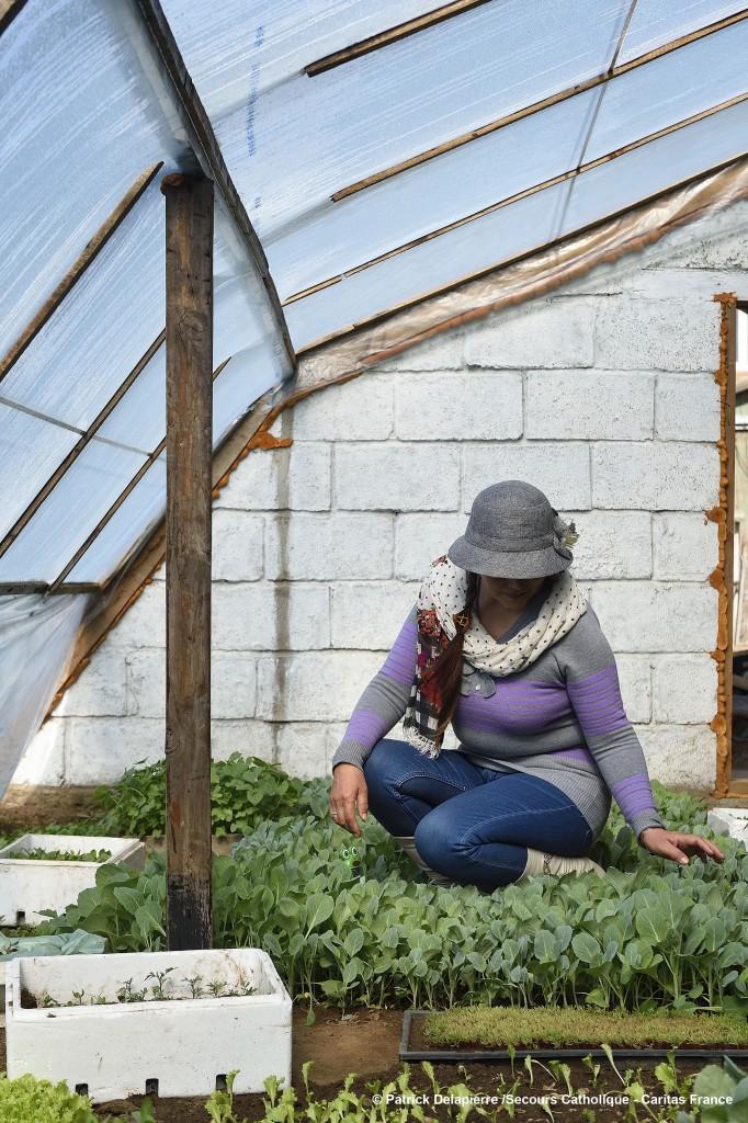 Enchtuya a 55 ans et son travail à la serre occupe la majeure partie de son temps. Elle soigne ses radis, ses concombres et ses laitues avec un soin confinant à la tendresse.