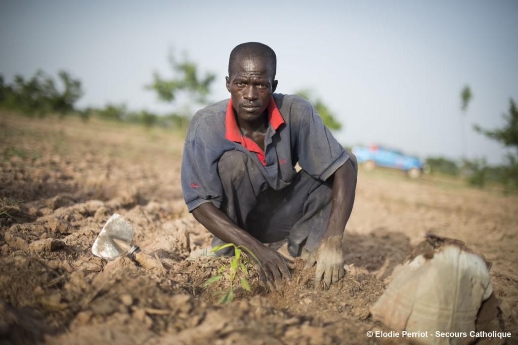 Togo – Dapaong : Sanlé Douti et sa femme ont terminé leur formation à Carto il y a 3 ans. Grâce aux deux bœufs qu'ils ont reçus à la fin de leur formation et grâce à ce qu'ils y ont appris, ils cultivent aujourd'hui leurs propres champs et peuvent envoyer leurs quatre enfants à l'école