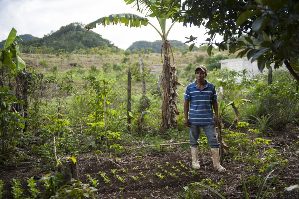"""Village d'Ejido Graciano, avec Caritas San Cristobal, programmes agricoles. Agriculture. L'action est de soutenir une agriculture """"bio"""" sans pesticide, une agriculture raisonnée. Afin de récolter de bons produits, une belle récolte, pour la consommation et, idéalement pour la vente. Ici José Lopez Torres, agriculteur, chez lui, dans son jardin, où il cultive et récolte."""